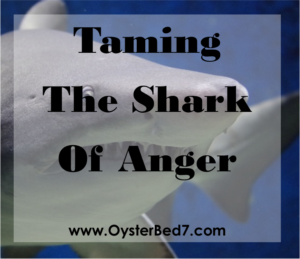 Shark of Anger