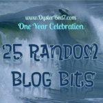 25 Random Realizations after 1 Year Blogging