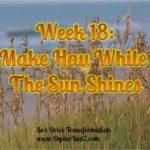 Week 18: Make Hay While the Sun Shines