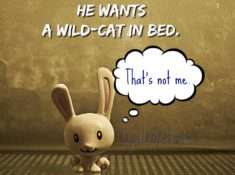 Overcoming Sexual Objections He wants a wild cat in bed. That's not me.