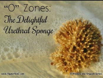 """O"" Zones:  The Delightful Urethral Sponge"