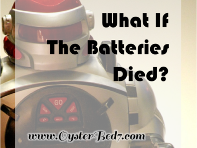What If The Batteries Died? A Sex Toy Story